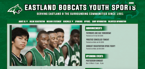 a website for a select basketball team